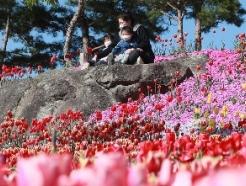 [사진] '봄이다 봄'