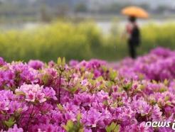 [오늘의 날씨]인천(16일, 금)…새벽부터 비, 최대 20㎜