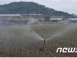 제주, '월 767만톤' 펑펑…농업용 지하수 요금 올린다