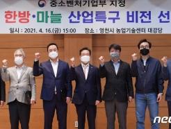 """영천시, 한방·마늘특구 비전 선포…""""전국 최고 마늘 만들것"""""""