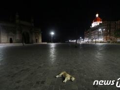 인도 신규 코로나19 확진자 23만명 돌파…연일 사상 최대(상보)
