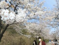 [내일 날씨] 맑고 화창한 일요일…강원지역은 '건조특보'