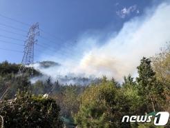 [사진] 여수 한 야산서 화재 발생…산림당국 등 진화 중