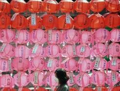 [사진] 부처님오신날 앞두고 기도하는 불자들