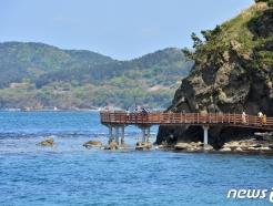 [사진] 푸른 봄 즐기는 관광객들