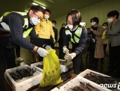 [사진] 日 수입 수산물  방사능 검사