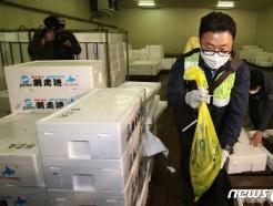 [사진] 일본산 수입 수산물 검체 이동