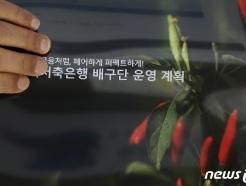 [사진] 창단 승인 여부 결정 앞둔 페퍼저축은행 배구단