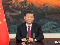 """시진핑 """"진정한 다자주의 견지…개방형 세계경제 구축해야"""""""