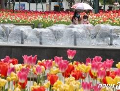 [사진] 봄에 찾아온 더위