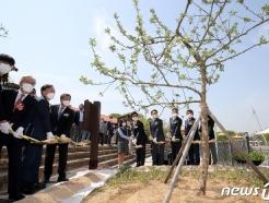 [사진] 뉴턴의 사과나무 식재
