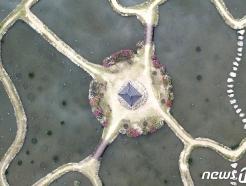 [사진] 하늘에서 본 상림연꽃 단지