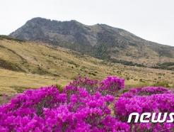 제주, 5월부터 한라산 탐방시간 연장…8월31일까지 적용