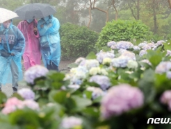 [오늘의 날씨] 제주(4일, 화)…산지·남<strong>동부</strong>에 강풍 동반 많은 비