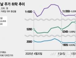 """가정의 달, 5월의 테마주 진입?…전문가 """"바람직한 현상 아냐"""""""