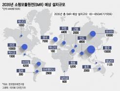 """""""유일한 청정 에너지원""""…스마트원전 SMR, K원전 구원투수 되나"""
