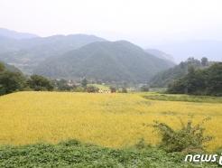 지리산 둘레길 289km '국가숲길' 지정