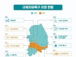 규제자유특구 2년차 대구·경북·전북이 최고