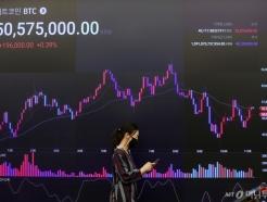 암호화폐 시장 폭락