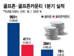 골프장·스크린골프 '쌍끌이 나이스샷'…미소짓는 골프존뉴딘그룹