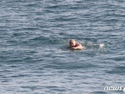 [사진] G7 정상회의장 인근 해안서 수영하는 존슨 총리
