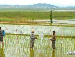 """[사진] 북한 """"각지 저수확지, 알곡생산 늘리기에 집중"""""""