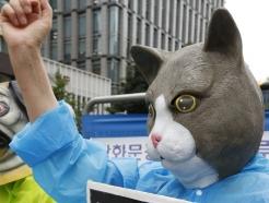 [사진] 동물학대 처벌 하한제를 도입하라!