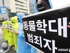 [사진] 한국동물보호연합, 동물학대 강력처벌 촉구