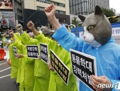 [사진] '동물학대' 양형 기준 강화하라!