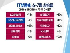 [투자뉴스7] 기대감 높아지는 애플·갤럭시 부품株 아직 안오른 종목은?