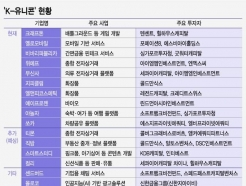 """<strong>한국</strong>인이 만들고 외국인들 돈잔치""…K-유니콘의 속사정"