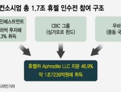 '휴젤은 시작' 1.7조 딜 나선 허태수號 GS 혁신, 더 빨라진다