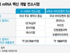 K-mRNA 백신 개발 나선 다윗과 골리앗
