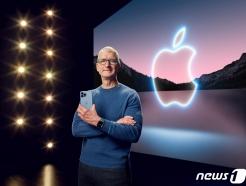 """애플은 삼성 따라쟁이?…""""폴더블 아이폰 2024년 나올듯""""[IT썰]"""