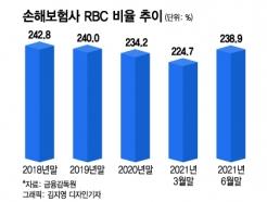 IFRS17·킥스가 뭐길래···추락하던 손보사 RBC의 반등, 이유는