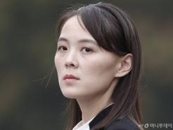 """""""文 종전선언은 흥미있는 제안""""…김여정 긍정평가에 대북주↑"""