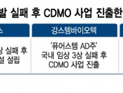신약개발 삐끗하면 'CDMO 진출' 선언…과연 장밋빛일까