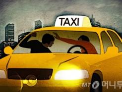 흉기로 택시기사 위협한 30대 남성, 잡고 보니 '대마초 양성'