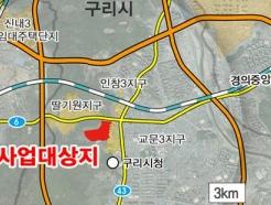 경기도, '구리교문 공공주택지구' 토지거래허가구역 지정