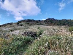 은빛 억새 물결로 일렁이는 무등산국립공원