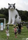 '거대 고양이가 나타났다'