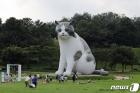 올림픽공원에 나타난 대형 고양이