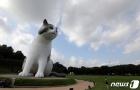 올림픽공원에 나타난 '거대 고양이'