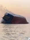 현대글로비스 전도 운반선 내 한국인 선원 4명 생존확인