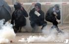 홍콩 시위 '해결 방안은'