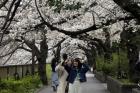 퍼지는 일본 불신…일본발 입국 통제 192개국