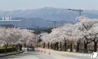 [내일 날씨]'전국 15도↑' 봄날씨… '일교차 주의하세요'