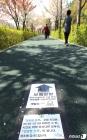 양재천 한 방향 걷기