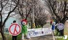 벚꽃길에서 투표 참여 캠페인 펼치는 선관위
