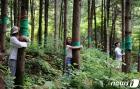 산림복지진흥원 특별여행주간 문화체험 프로그램 다양